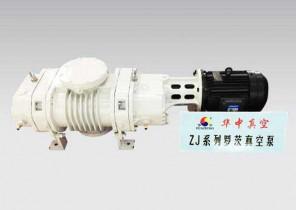 广东ZJ系列罗茨真空泵